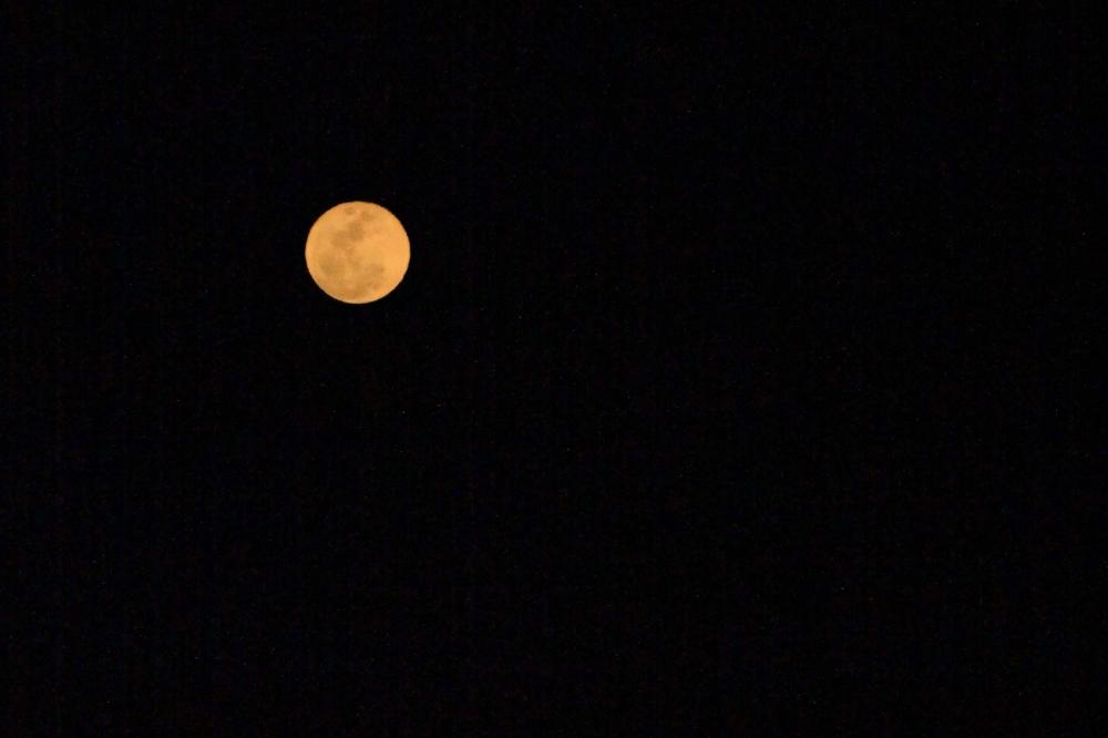 IMG_0950_moon