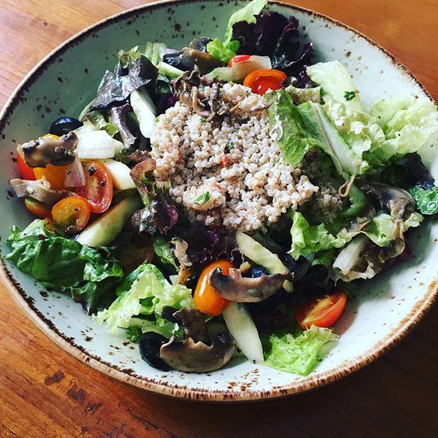 Quinoa Salad Bird Song
